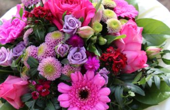 Pinks and Liliacs
